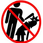 Domestic Deadly Violence