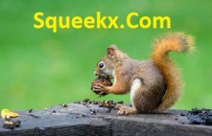 DonMcElyea.Com link to Squeekx.Com